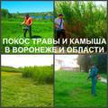 Покос травы. Мы косим траву в Воронеже.
